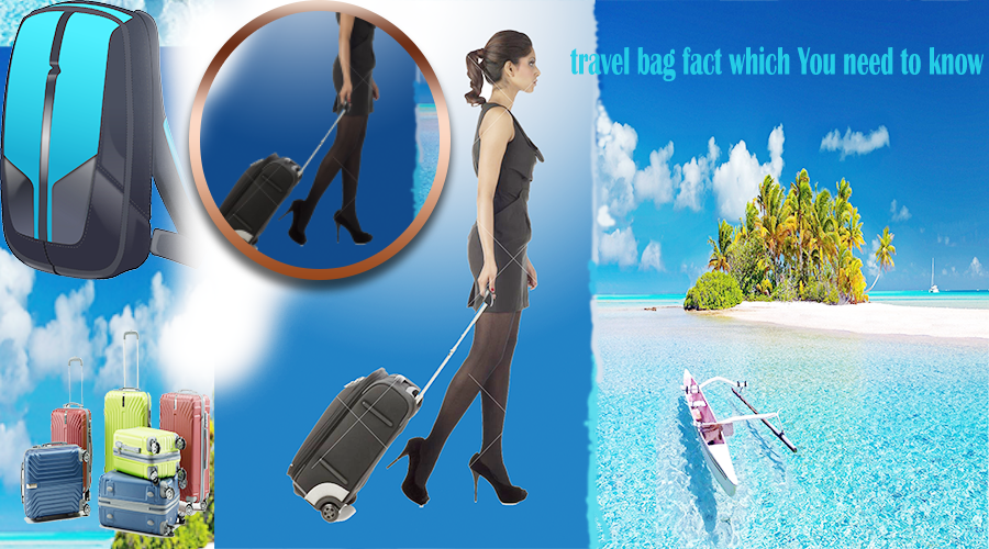 Travel Bag fact which You need to Know